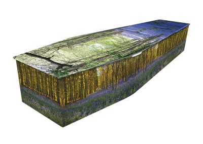 Colourful-Coffin-Bluebell-Wood-1